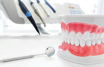 Set Up Teaching Teeth Roswell GA